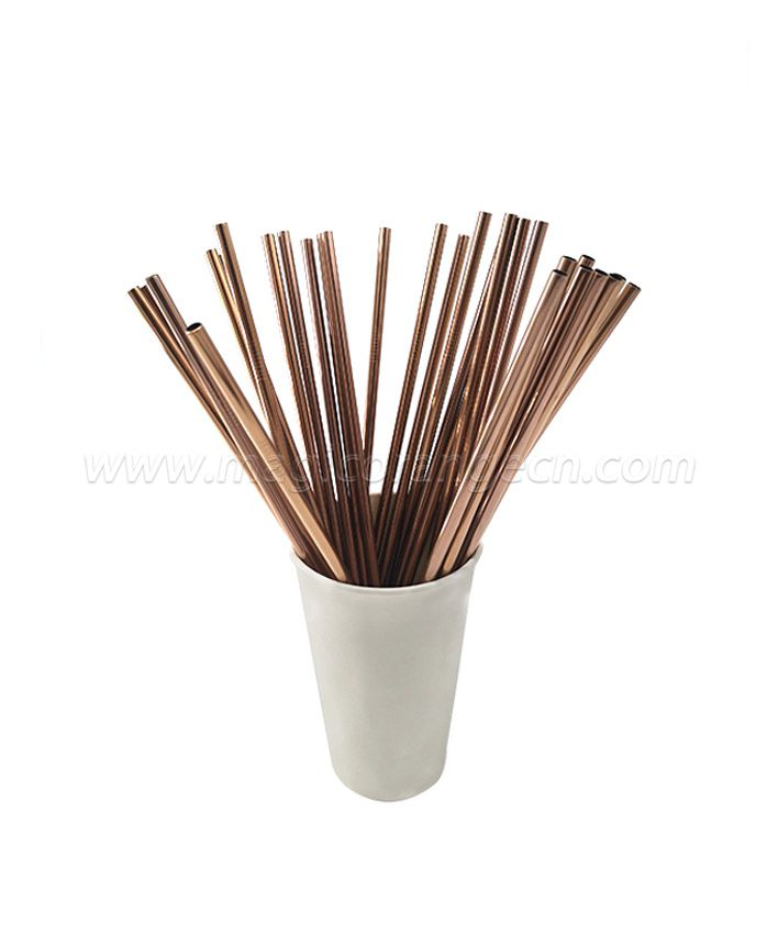 Stainless Steel Straws MOT1022