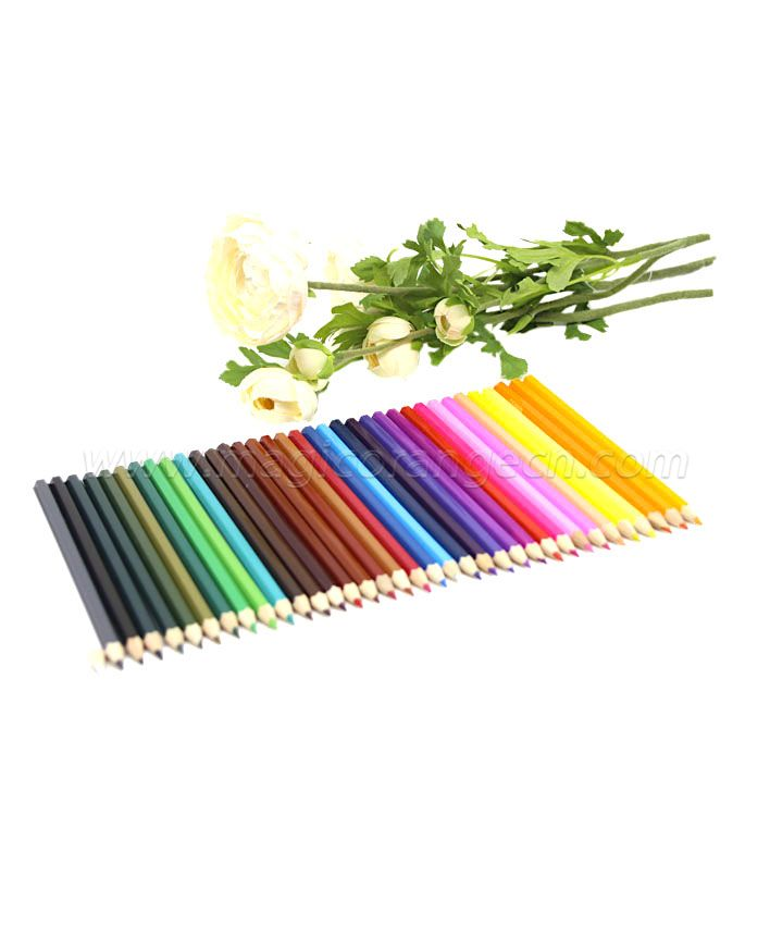 PN1061 Colour Pencil