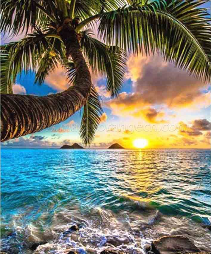 CTY101211 Coconut tree Beach View DIY 5D Diamond Painting Kits for Adults Rhinestone Gem Art Painting Full Drill Round Diamond, Perfect for Home Wall Decorate